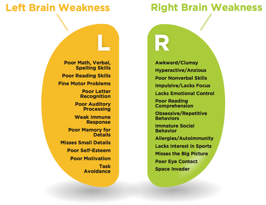 image about Left Brain Right Brain Test Printable named On-line Evaluation Thoughts Equilibrium Software package